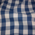 Gingham Checker Blue